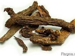Цимицифуга (клопогон) корень