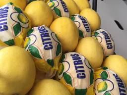 Цитрусовые, мандарин , апельсин, лимон