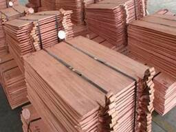 Copper Cathode Cathode Copper