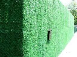 Декоративное ограждение Зеленый забор - фото 2