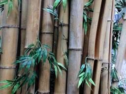 Декоративный бамбуковый ствол
