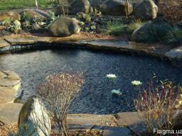 Декоративный пруд. Искусственные водоемы