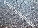 DEXTER Канадский нано — трансгенный гибрид рапса. - фото 1
