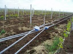 Для виноградников и садов: