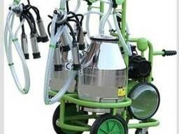 Доильный аппарат для коров с двумя ведрами. Турция