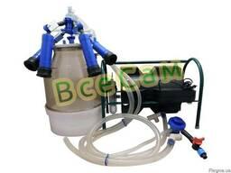 Доильный аппарат Импульс ПБК-4 от 1-3 коров ( рез. Д.041 )