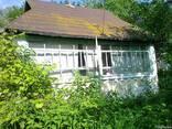 Дом с газом, хоз. постройки, большой участок, сад - фото 4