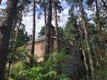 Дом в лесу, Кировское ( Обуховка) - фото 5