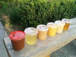 Домашній мед з липи, гречки, коріандру, акації, травневий