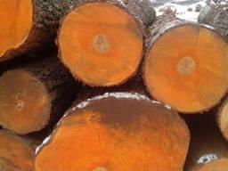 Доска сухая ольха,ясень,дуб,липа,