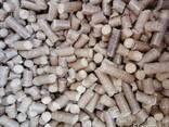 Древесные пеллеты (гранулы топливные ) от производителя - фото 1