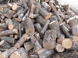 Куплю дрова.