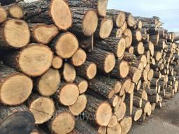Закупаем дрова твердых пород .