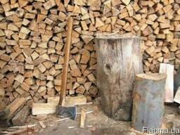 Дрова чистый дуб - фото 1