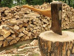 Продаются дрова населению в чурках и колотые!