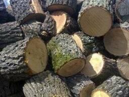 Дрова дубовые колотые - фото 1