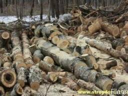 Дрова дубовые колотые с доставкой в Харькове