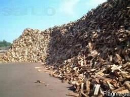 Дрова дубовые колотые сухие Вишгород