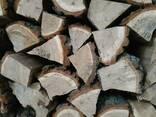 Дрова колоті камерної сушки - фото 2