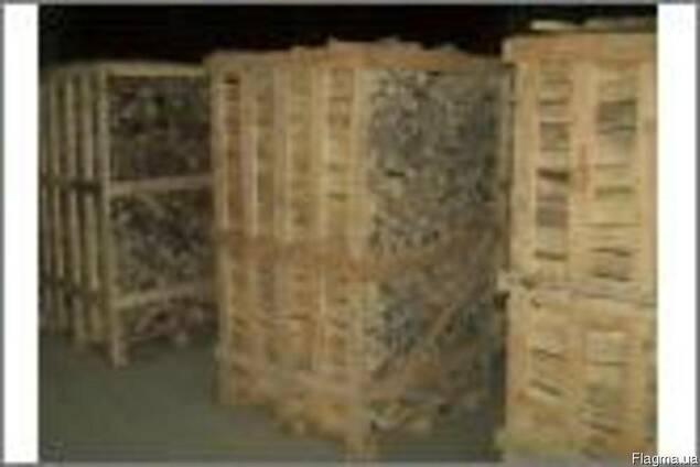 Дрова колотые пород (дуб, бук, граб, ясень, берёза)