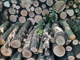 Дрова Одесса. Доставка дров Маяки. Твердые дрова Дальник
