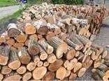 Дрова с доставкой (дубовые, граб, ольха) метровки и колотые - фото 1