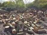 Дрова с доставкой (дубовые, граб, ольха) метровки и колотые - фото 4
