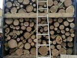 Дрова твердых пород метровки и колотые - фото 3