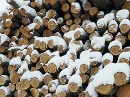 Дровяная древесина Дуб подпар, заболонь L=2,5v
