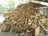 Дубовые колотые дрова Киев - фото 1