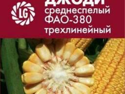 Джоди кукуруза купить, Джоди цена