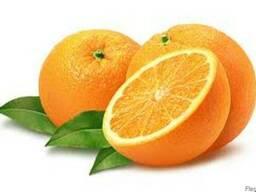 Эфирное масло Апельсин сладкий в Крыму