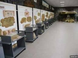Экскурсия в заповедник «Каменная Могила»