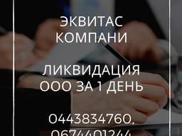 Експрес-ліквідація ТОВ у Києві. Процедура ліквідації ТОВ за 1 день.