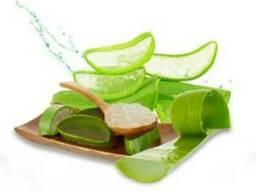 Экстракт Алоэ-вера (Aloe Barbadensis Leaf Powder) Под заказ!
