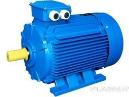 Электрические и бензиновые двигатели используемые на станках