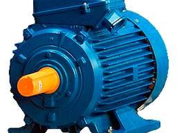 Электродвигатель АИР 160М8