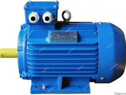 Электродвигатель електродвигун АИР 250 М8 45 кВт 700 об/мин
