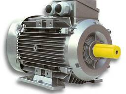 Электродвигатели асинхронные трехфазные Elettronica Santerno
