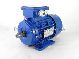 Електродвигун трьохфазний MS 71 3-6 B14 В3 В5 0,37 кВт 1000об/хв