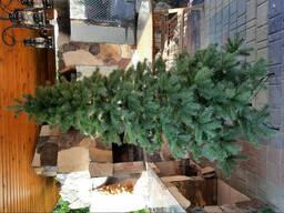 """Елка ель искусственная литая """"Кедр Европейский"""" зеленая, пышная густая, 210 см, с. .."""