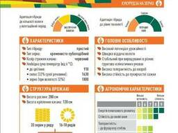 ЕС Геллери кукуруза купить, Геллери цена, фао 340