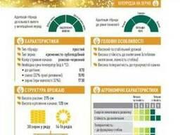 ЕС Креатив кукуруза купить, Креатив цена, фао 300