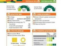 ЕС Кроссман кукуруза купить, Кроссман цена, фао 240
