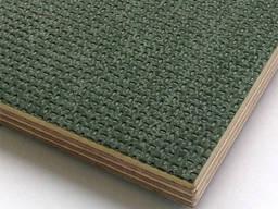 Фанера 15х1250х2500 F/W Рига (green)
