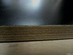 Фанера ламинированная 18х1500х3000 F/F Латвия купить