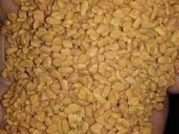 Фенугрек семена