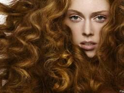 Фитокомплекс против выпадения волос, 1 литр