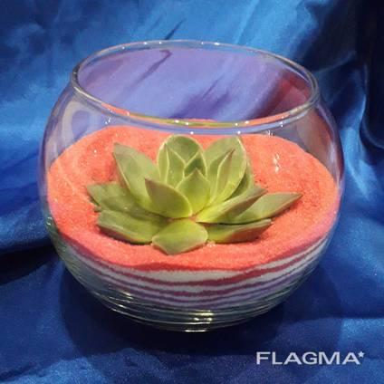 Флораріум