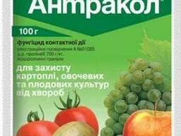 Фунгицид Антракол 100 г.
